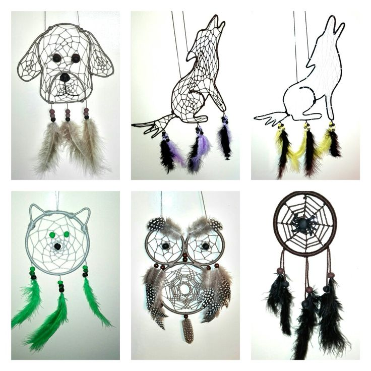 Dog/Wolf/Cat/Owl/Spider