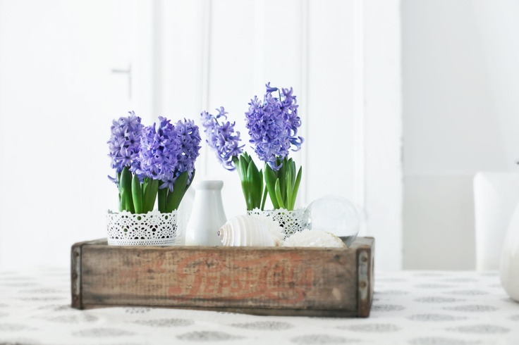 Love purple flowers and white pots with vintage boxes.