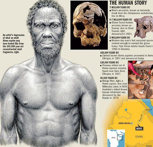 first homo sapiens found - photo #19
