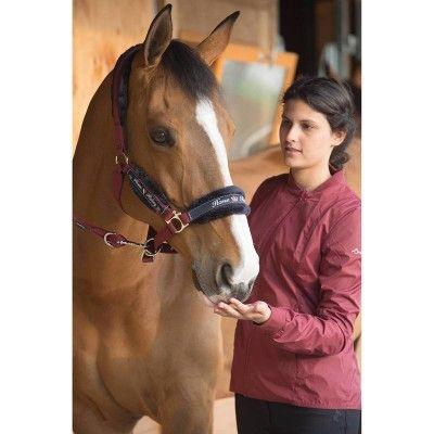 GROUPE 8 Equitation - Kit licol WINNER bordeaux FOUGANZA - Equipement cheval  au repos 0d8b8ffe1be