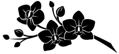 http://demur.pl/naklejki/na-sciane/kwiaty/kwitnaca-orchidea