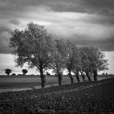 "Saatchi Art Artist Paul Cooklin; Photography, ""Walsham Le Willows, Suffolk (Limited Edition 1/50) (AP 2/5)"" #art"