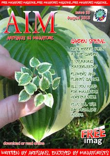 Artisans in Miniature: AIM iMag Issue 55 out now