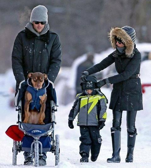 Via..Friends of Homeless Animals, INC of RI·  Our favorite picture of Tom Brady has nothing to do with football. It's this one, pushing his rescued pitbull in a baby stroller because the snow and ice were bothering her paws. You don't have to be a football fan to be a fan his of kindness to animals.