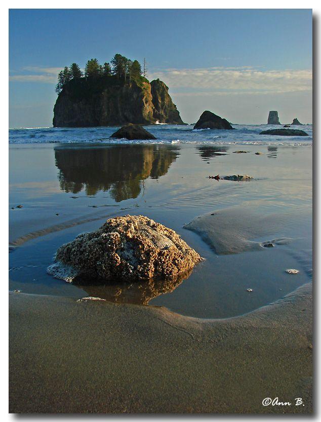 Second Beach, Washington State.