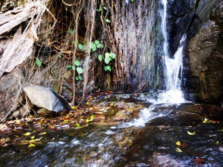 Lower ghaghri waterfall in #netarhat at #latehar district #govindpathak click
