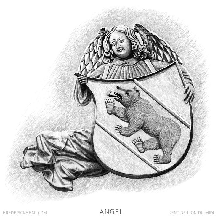"""This is """"Angel"""" an illustration from my new book Frederick Bear  A Tale of Bern. It's a story for """"children of all ages""""... that just about covers everyone... one would hope!  The original sculpture of an angel with a shield is over a large door on the North side of the  Berner Münster. I added a bear... #bern #bear #switzerland #art #literature #book #drawing #procreate #digital-art #apple #iPad #print #giclée #realism #illustration #sketch #artist #instaart #artwork #angel"""