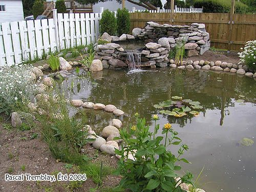 Pond Waterfall - How to build Water Garden with Waterfall - Pond filter media