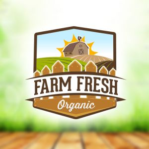 Get the best logo designs for your business.