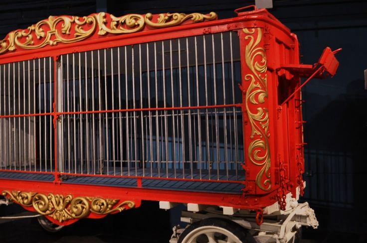 Pictures Of Circus Wagons Circus Animal Cage Wagon