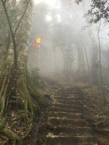The climb to Tan Vien peak (Ba Vi national Park, Vietnam)