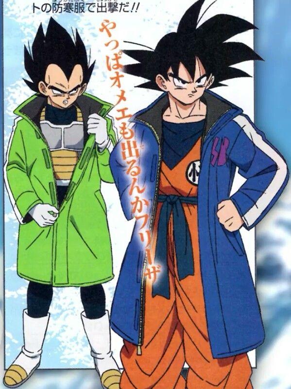 Goku And Vegeta S New Jackets Dragones Dragon Ball Dragon Ball Z