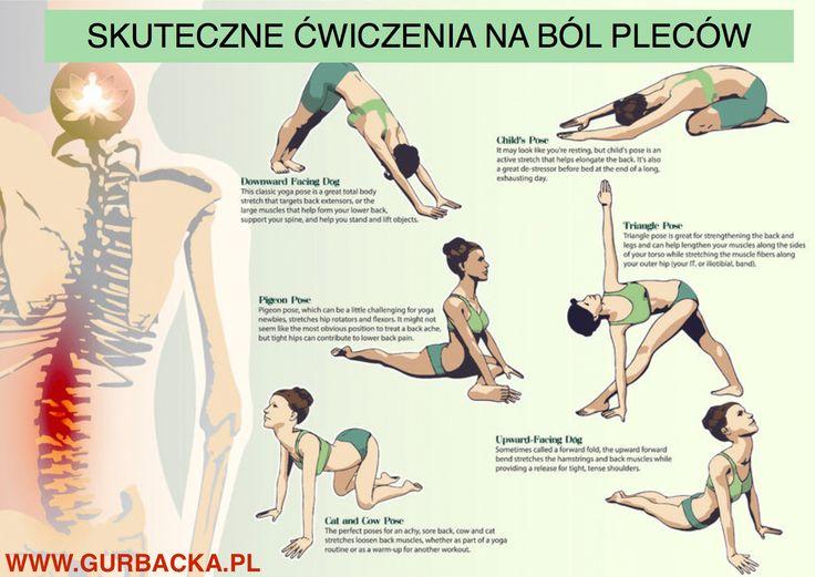 Ból pleców ma wiele czynników. Najczęściej jego przyczyną jest siedzący tryb życia i brak regularnej aktywności fizycznej. Poznaj prostych 7 ćwiczeń.