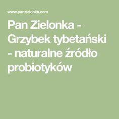 Pan Zielonka - Grzybek tybetański - naturalne źródło probiotyków