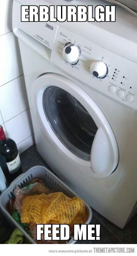 Hungry washing machine…