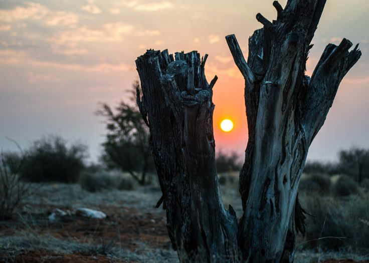 Sunset at Blumvelde - Namibia