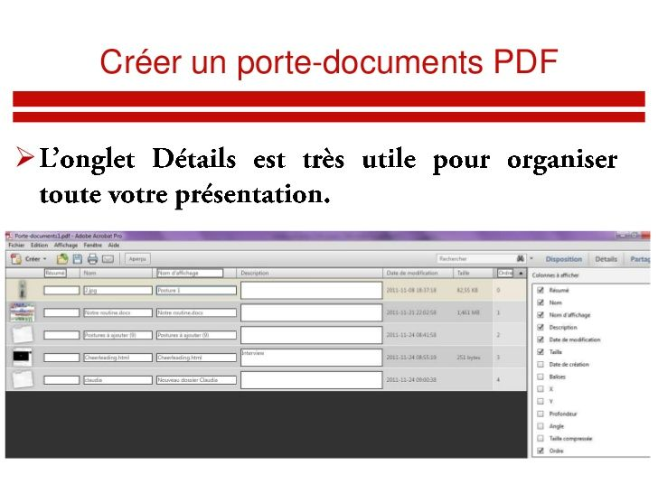 Adobe acrobat x pro 10.1.2.45