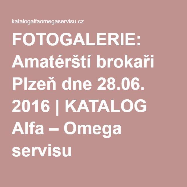 FOTOGALERIE: Amatérští brokaři Plzeň dne 28.06. 2016 | KATALOG Alfa – Omega servisu