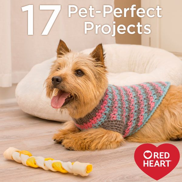 17 Crochet and Knit Pet-Perfect Projects | Stylin' Pets ...