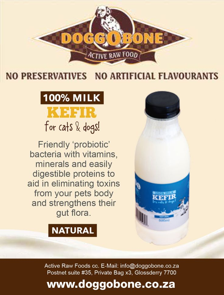 Doggobone Kefir A friendly 'probiotic' bacteria with vitamins, minerals and easily digestible proteins to aid in eliminating toxins from your pet's body and strengthening their gut flora. Available from your nearest Doggobone stockist
