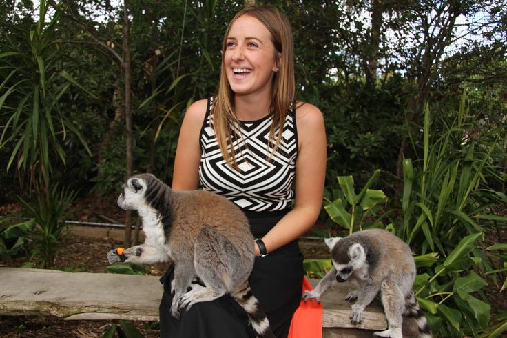 Come and meet the bachelor troupe of Ring-tailed Lemurs in their island home at Melbourne Zoo!