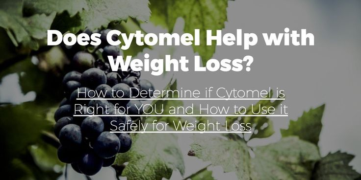 cytomel weight loss thyroid hormone