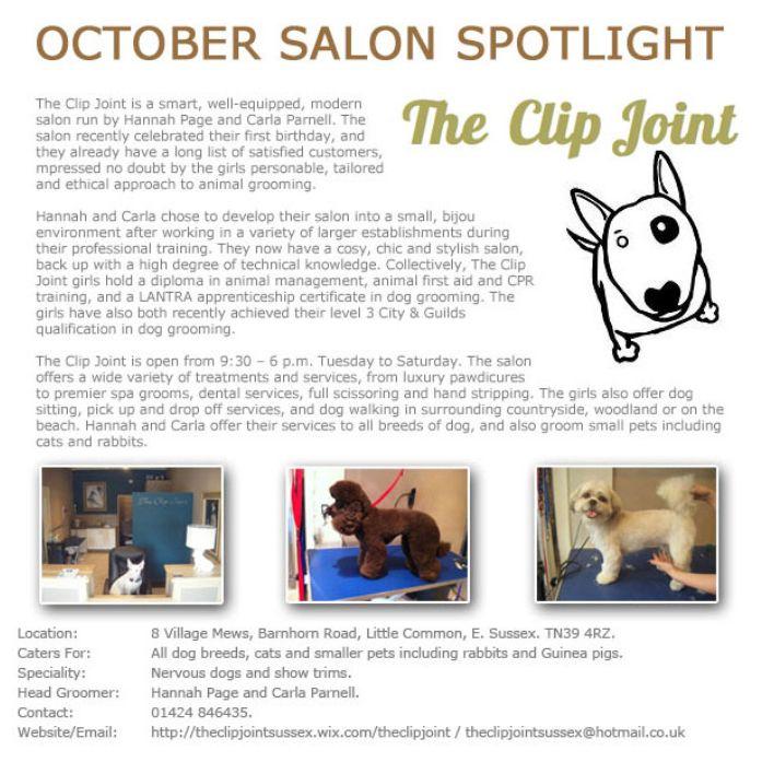 Salon Spotlight October 2013, The Clip Joint