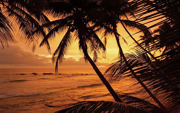 Orange Sunset Photograph - Sunset At The Ocean  by Svetlana Yelkovan #SvetlanaYelkovanFineArtPhotography #SriLanka #ArtForHome #FineArtPrints #Landscape #Ocean  #Sunset #Beach