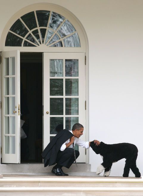 POTUS and Bo