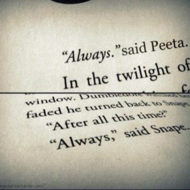 Always <3 Peeta & SnapeFans Girls, Severus Snape, The Hunger Games, One Word, Hungergames, A Tattoo, Harry Potter Quotes, Book Series, Fandoms