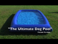 17 Best Images About Dogscaping On Pinterest Dog Pools