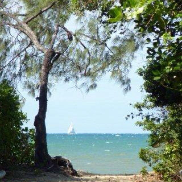 Sail away! A perfect paradise for your next holiday. Palm Cove - tropical north Queensland, Australia.