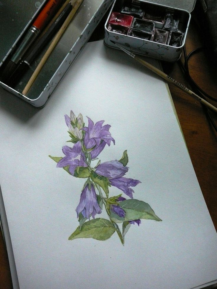 Bells, watercolor. 21х30. Н.Репина #watercolor
