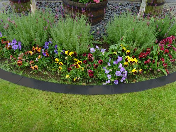 1000 ideas about metal lawn edging on pinterest front - Garden metal edging strip ...