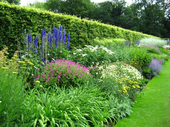 Anglesey abbey herbaceous border garden design for Garden border plant designs