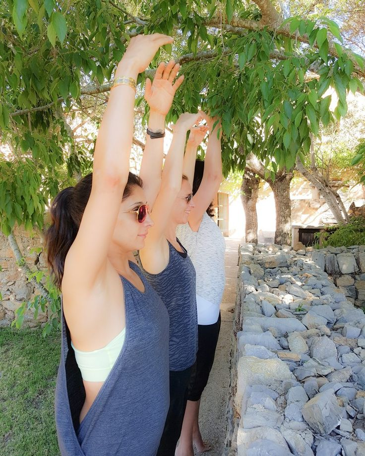 PILATESZEIT & HIVE! BARREFITNESS IN MALLORCA #pilates #pilateszeit #pilatesstudiodüsseldorf #düsseldorf #ballettworkout #ballettfitness #barreworkout #sports #fitness #train #health #balletfitness #best #fun #sexylegs #sexyabs #training #love #active #excercise #sporty #workout #healthy #healthyliving #healthylifestyle #weightloss #abworkout