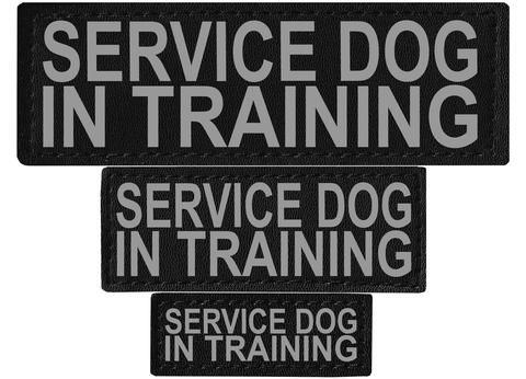 """DOGLine Velcro Patches """"Service Dog In Training"""" 2 Pack - SitStay - 1"""