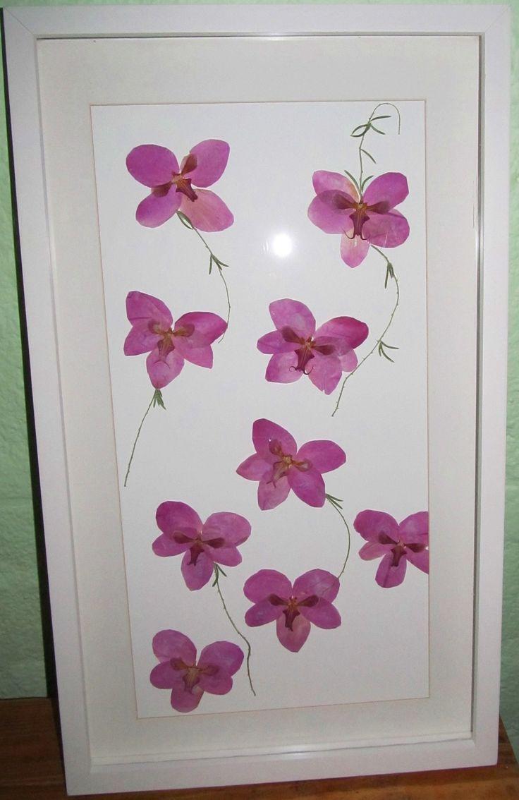 prensado y enmarcado de orquídeas de un  ramo de novia .