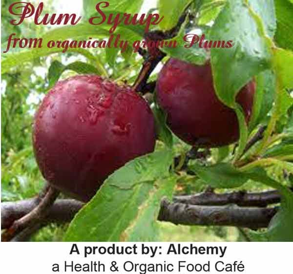 Ingredients: fresh plum pulp from organically grown Plums, unrefined sugar, lemon; no synthetic colours or flavours, no chemicals.