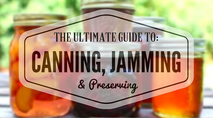 The ULTIMATE Guide to Canning, Jamming, and Preserving Undiscovered Kitchen A…