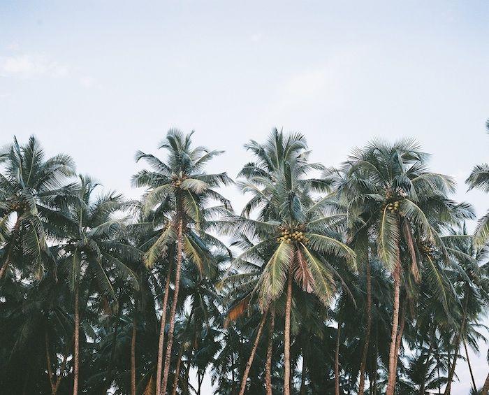 Afends X India: Palolem, India Photography by Sam Nolan