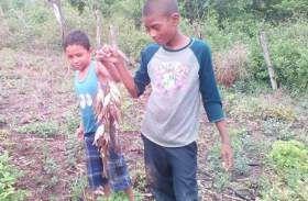 VIDEO: Vecinos de Yoro muestran evidencia de la extraña 'lluvia de peces' - Diario El Heraldo