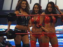 The Bella Twins - Wikipedia