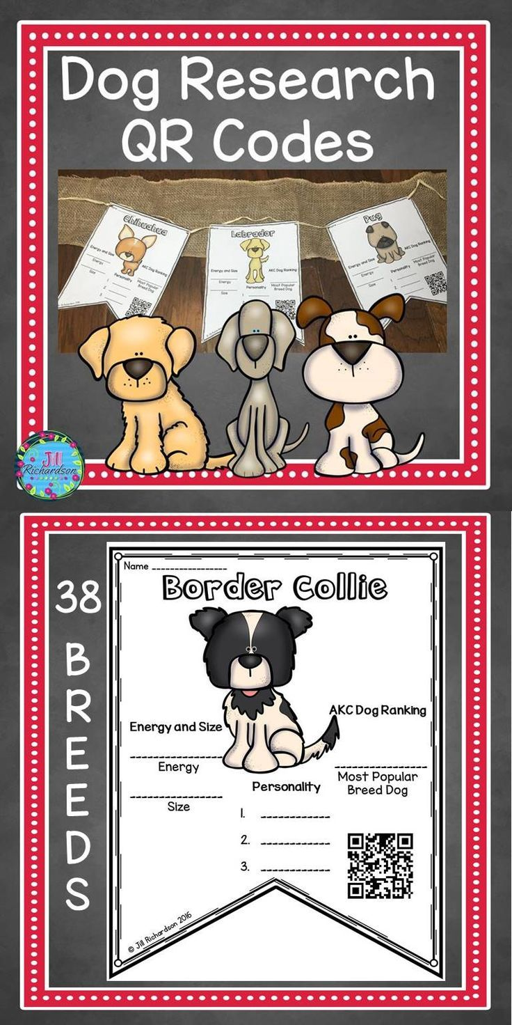 Have fun Researching Dogs! Includes: 35 different dog breed pennants in color 35 different dog breed pennants in black and white 35 Answer Keys A writing pennant to be copied on back of pennant if desired.