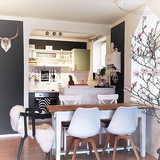 Küchenimpressionen vom Frühling😉#magnolia#magnolien#kitchen#kitchennews#ilovemyinterior#myhomestyle#myhometoinspire#colourmehappydecorating#wohnklamotte#wohnkonfetti#solebich#interior#interiors#interiorandhome#interiorandliving#interiors123#interiorstories#küche#kitchendoorcatering#interiorforyou#interiorforinspo#interiørmagasinet#interior125#küchenkonfetti