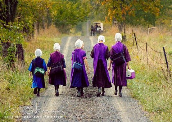 5 Amish Girls