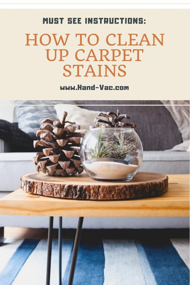 How to remove carpet stains stain remover carpet