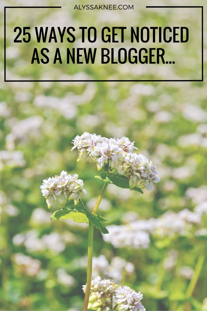 25 Ways To Get Noticed As a New Blogger - ALYSSA KNEE