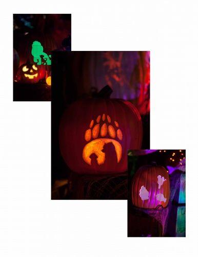 carved foam pumpkins   left: Simba   center:  Brother Bear   right:  treats (Mickey ice cream bar, Dole Whip, Turkey leg)