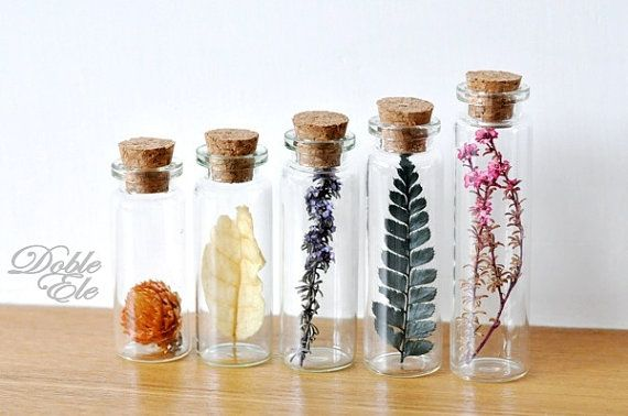 d e s c r i p t i o n ........................................................................................................................ Set of 5 Glass bottles with a piece of different plant! - Dried flowers & leaf - Pink & purple little flowers - Moss green fern - Pale yellow leaf - Light orange pink flower Each bottle measures 2.2cm wide, range from 6 to 8.5cm tall. You could use these as mini decorations! I really like the color mix of this set! Hope you like it too!...